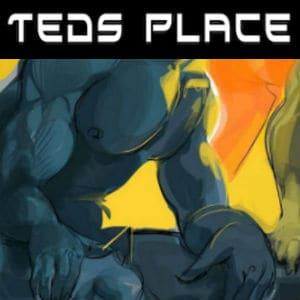 مكان تيدز