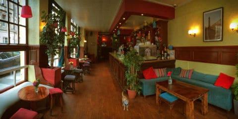 TravelGay anbefaling Victoria Bar
