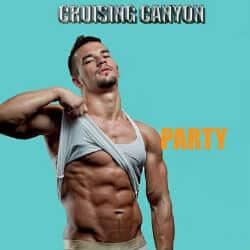 Cruising Canyon