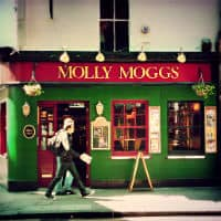 Molly Moggs – CLOSED