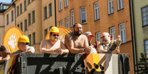 Viking Bears
