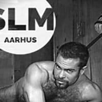 gay massage thai århus escort liv