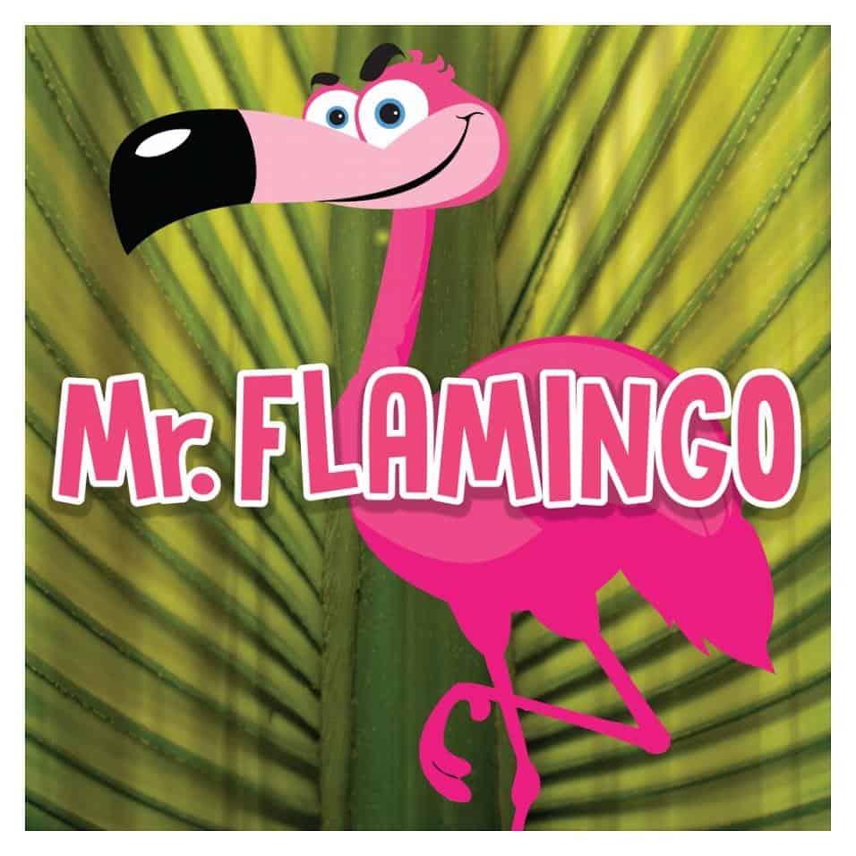 Mr. Flamingo