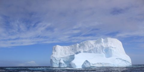 Antarctic Adventure and Cruise Gay Group Trip
