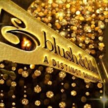 Blush et Blu Bar Denver Colorado Denver Gay Bar