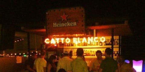 Gatto Blanco Rooftop Bar. Panama City