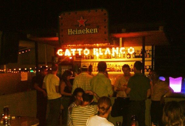 Gatto Blanco Rooftop Bar