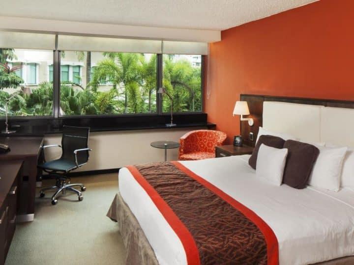 from Maxwell gay condado puerto rico hotel