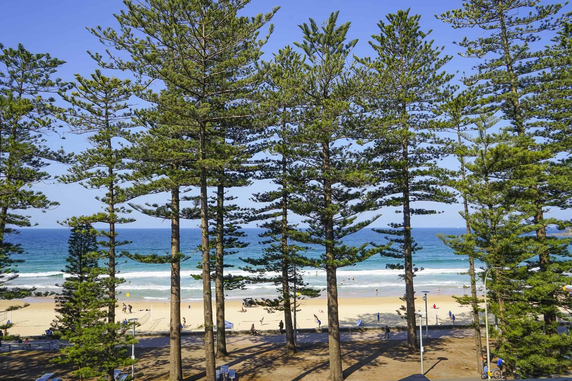 TravelGay recomendação Manly Beach