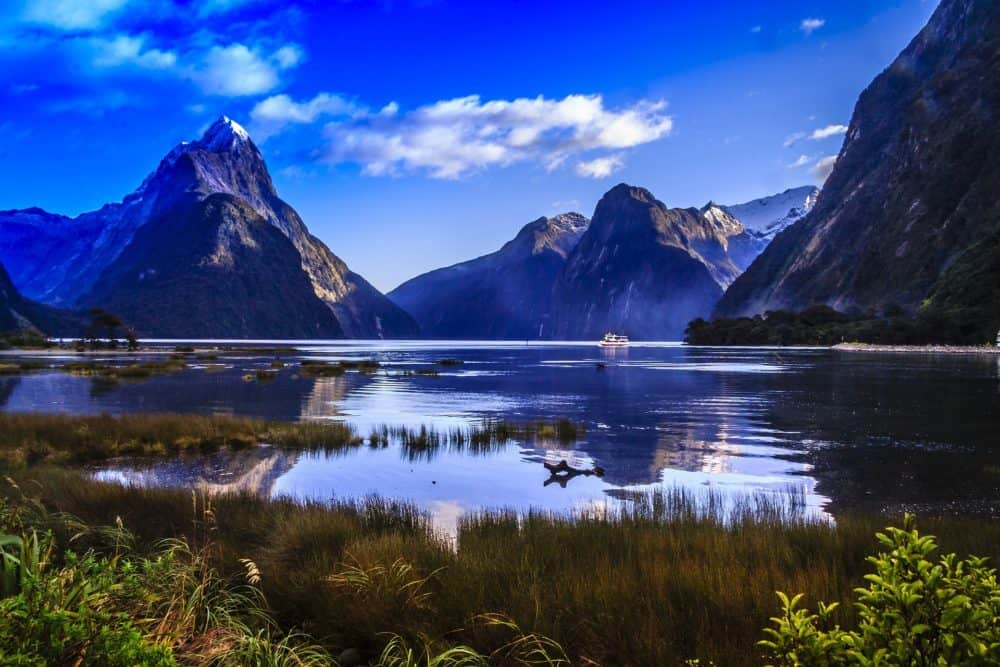 Gay New Zealand