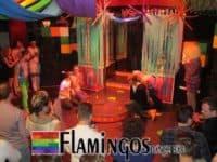 Flamingos Dance Bar