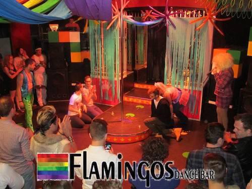 Tasmania Gay Scene Guide 2019 - reviews, gay map, information