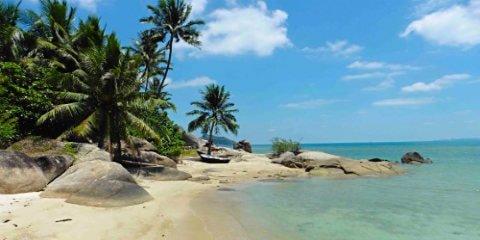 TravelGay anbefaling Islandboys Phangan