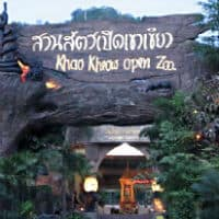 Khao Kheow Open Zoo
