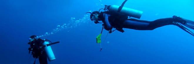 Scuba Dive