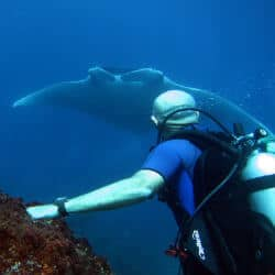 LGBT Scuba Diving Trips Worldwide