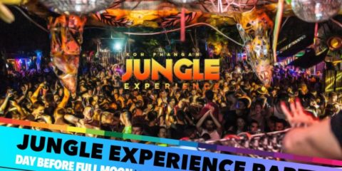 Jungle Experience Party
