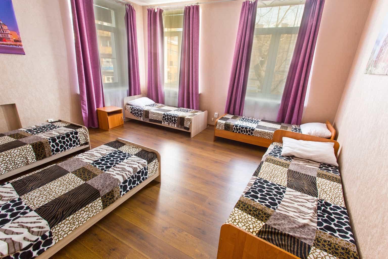 Bild von VIVA Hostel
