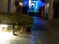 VIP酒吧和小酒馆