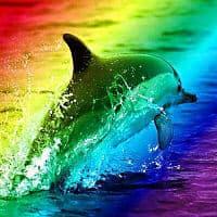 Dyk regnbuen