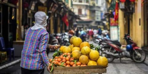 Hanoi City & Food Tour – Private Tour Guide by Tony