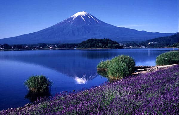 Iconic Sunrise At Mount Fuji