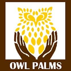 OwlPalms Spa
