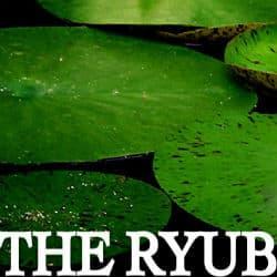 RYUB –停止營業
