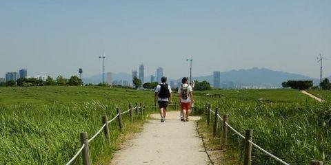 TravelGay raccomandazione Guida turistica di Seoul