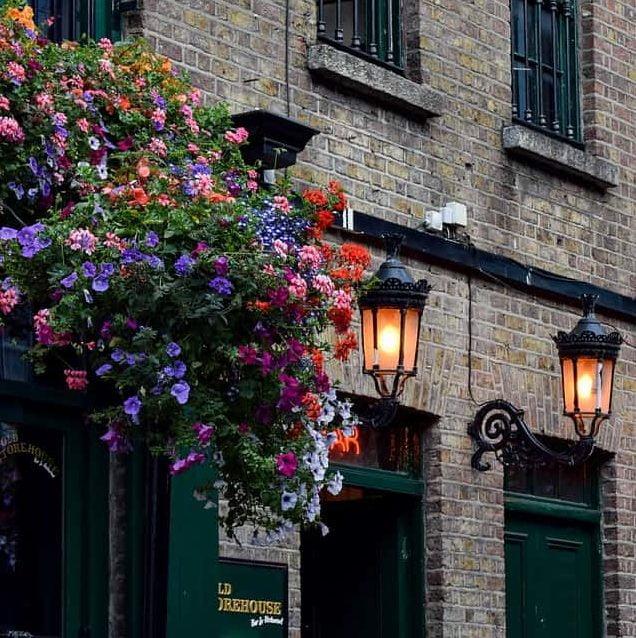 دبلن · بيوت ضيافة للمثليين وفنادق المبيت والإفطار