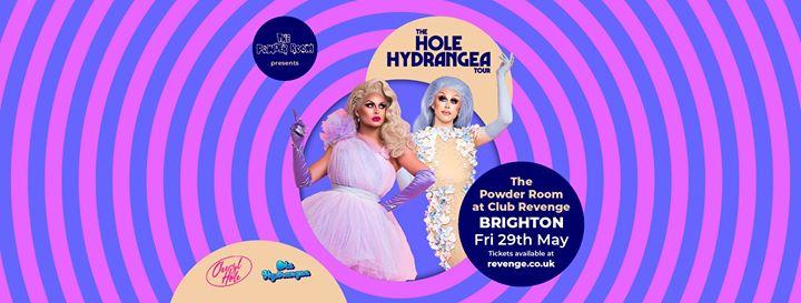 Cheryl Hole & Blu Hydrangea at The Powder Room