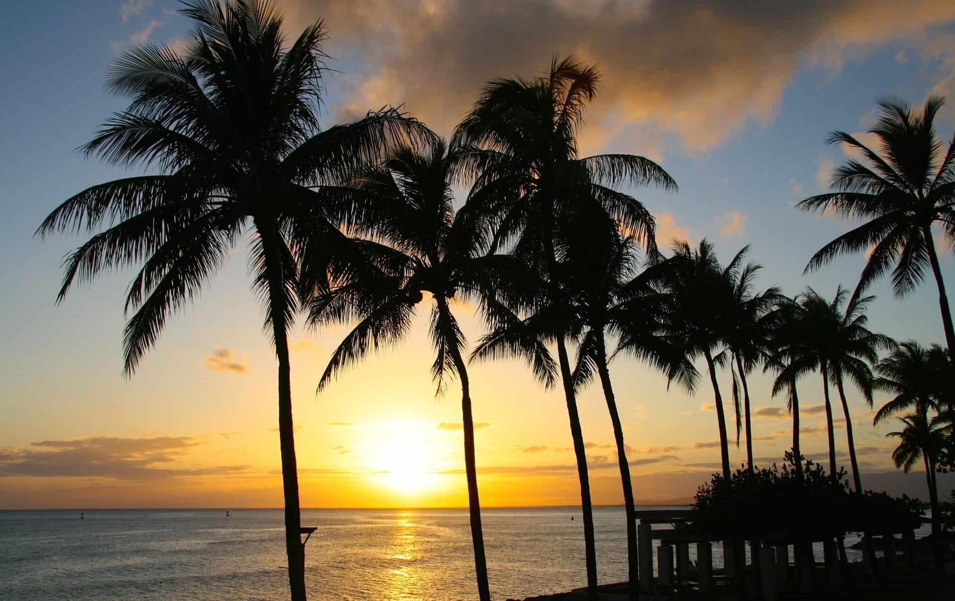 Lesbiche a Honolulu