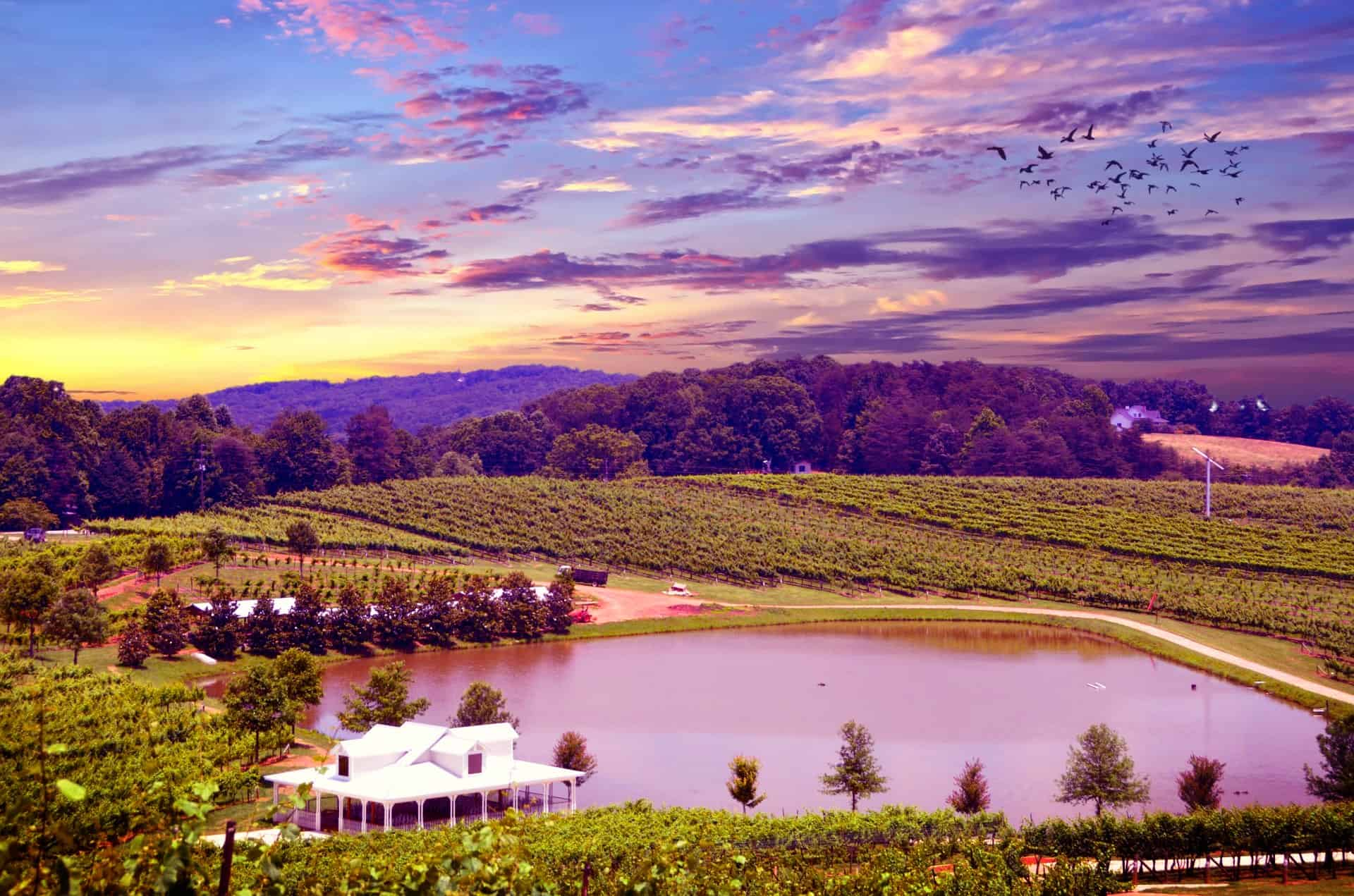 Gay Napa & Sonoma Wine Tours and Hotels