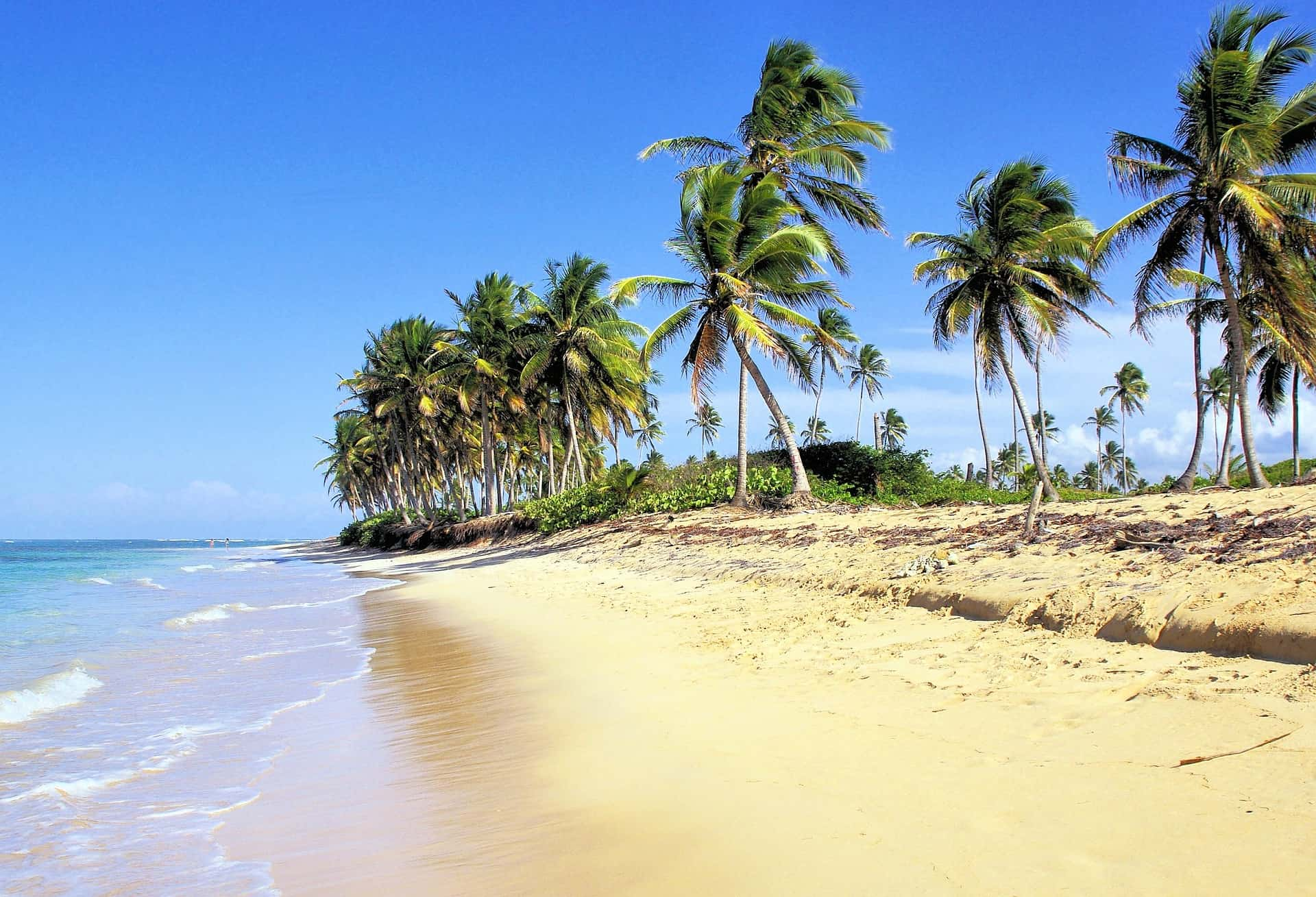 Dominican Republic Gay Bars, Clubs and Hotels